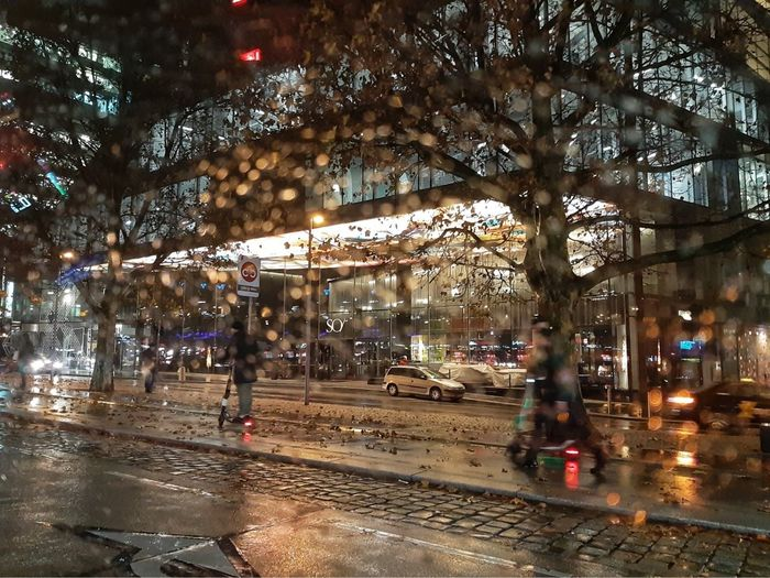 Rainy Days Rain Reflection Cityscape Citylights City Light Wet Rain Transportation Street Architecture Building Exterior Mode Of Transportation Illuminated City Life Tree Rainy Season Motor Vehicle Night City Street