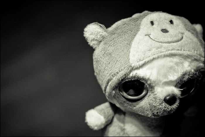 . darkside of the sweet ... Canon Canon 450D Childhood Cuddly Toy Eyes Monochrome Photography Spooky Sweet Vignette
