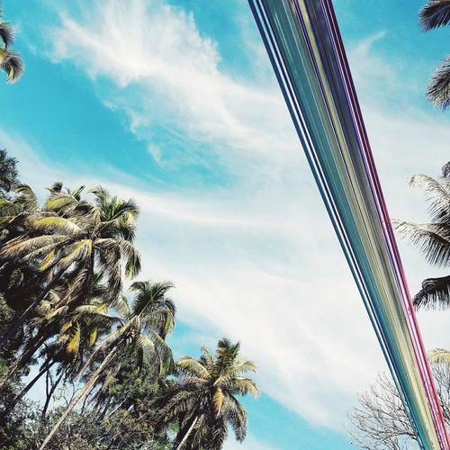 Sky Blue Day
