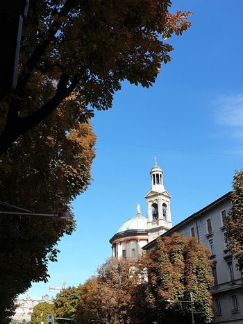 Leaf Trees No Filter, No Edit, Just Photography Community No Filter Italy Urban Blue Sky Tree History Sky Architecture Building Exterior Built Structure Bell Clock Tower Bell Tower Bell Tower - Tower Church