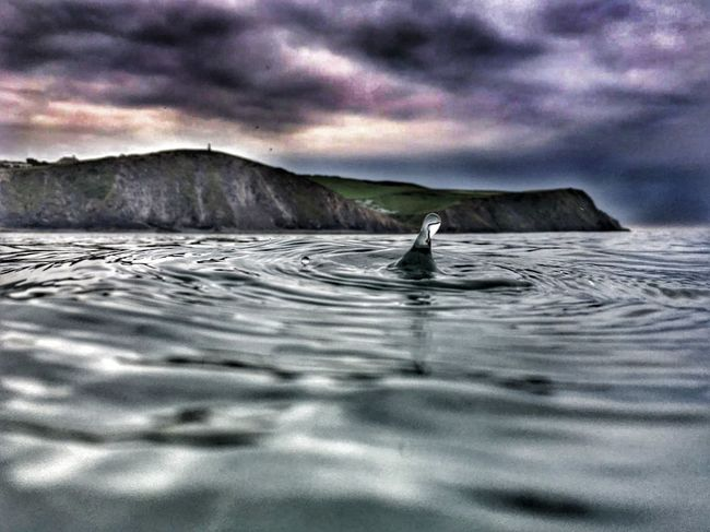 My son's photo..my edit @Thomas Borrington all credit for photo to him .. Borth, Wales Borth Beach Borth Adventure No People Sky Landscape Swimming Drip Sea And Sky Sea Cliff Looking Back My Edit Alone In The Dark Storms A Brewin! Cliffs Monument Wales You Beauty Wales❤ Seascape From The Deep Close-up Cloud - Sky Sea Beauty In Nature Let's Go. Together. Breathing Space