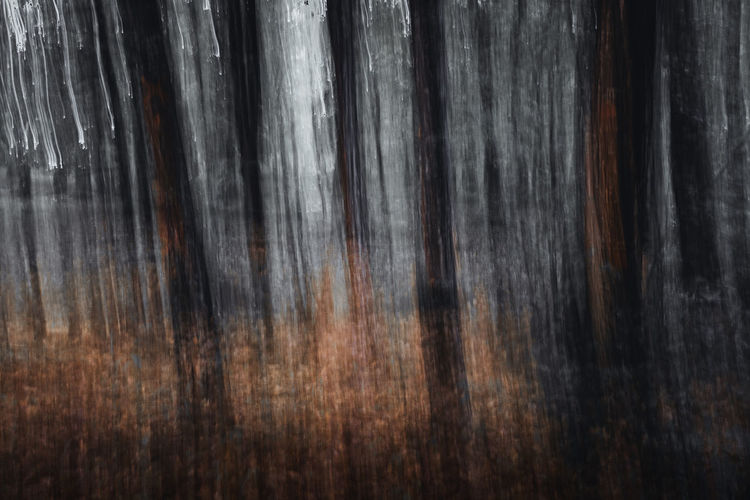 Sunset Dreams Wood - Material Textured  No People Backgrounds Close-up Pattern Full Frame Wood Brown Indoors  Day Wood Grain Nature Plank Tree Tree Trunk Abstract Trunk Selective Focus Textured Effect Icm Intentional Camera Movement Focus On Foreground Sharp Concept Conceptual Nikon D7500 Photography Art Artistic Mood Dark Forest Toronto Canada Technique