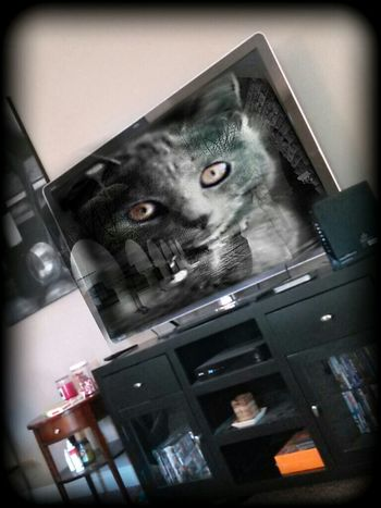 Human Meets Technology Thoughts And Memories Whats On My Tv Life Before Digital Surreal Dream 60 View