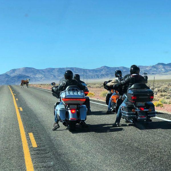 Road Trip Road Motorcycle