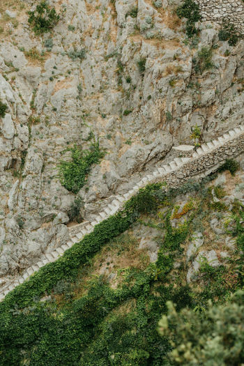 Stairs From Above  Italy Positano Amalfi Coast Costa Amalfitana Rocks Green