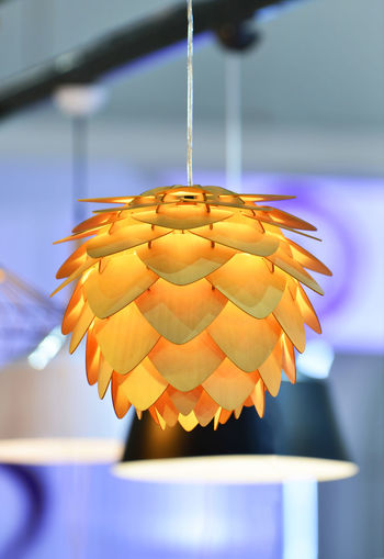 Modern style round ceiling lamp yellow Art Cecor Close-up Day Decoration Desing Fiower  Focus On Foreground Fragility Hanging Indoors  Lamp Modern No People Style Yellow