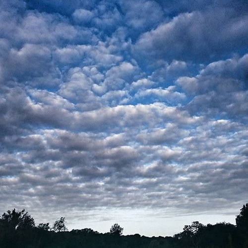 Cloudporn Beckenhamplacepark