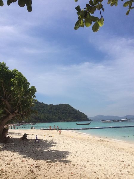 Phuket,Thailand Bird Singing Beach Sea Water Sky Beauty In Nature Nature Sand Tree Scenics Tranquil Scene Tranquility Shore Outdoors Cloud - Sky Real People Leisure Activity Day Coastline Vacations Coral Island