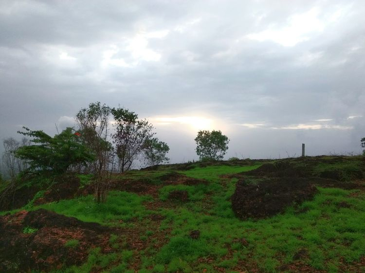 Nature_collection Nature Photography Nature Love Sunset_collection Sunset Hill Top Hill Top Sunsets Hill Top View Green Green Green!  Greenery Green Grass