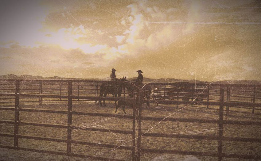 For The Brand Ranching, Eyeem Landscapes Country Wild West Branding Cattle Vintage Cowboys