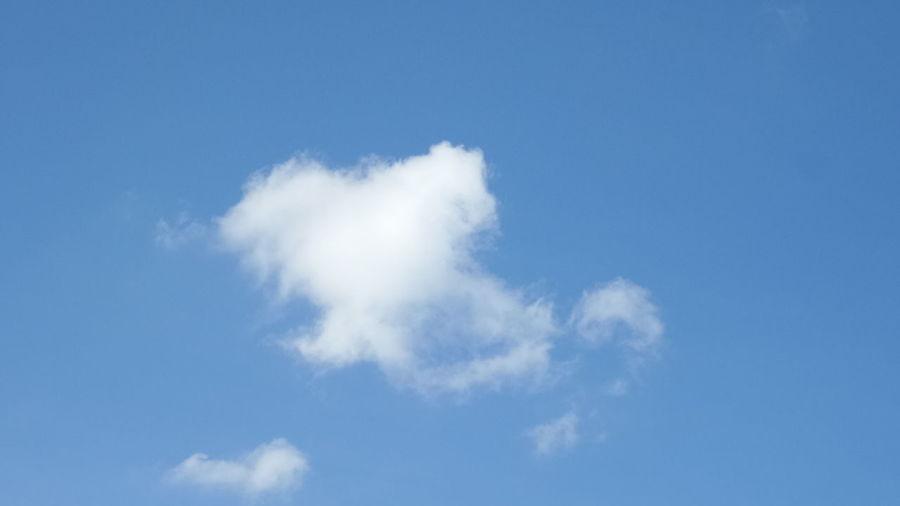 Look like? Sky