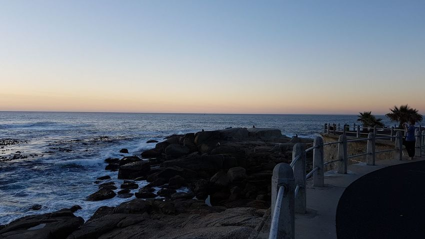 Sea Scenics Sunset Horizon Over Water No People Sky Beauty In Nature City Outdoors Tree Nature Beach Cityscape Day From Where I'm Standing God's Glory On Display  Sunset Over Africa Cape Town, South Africa Cape Town South Africa 🇿🇦 Western Cape