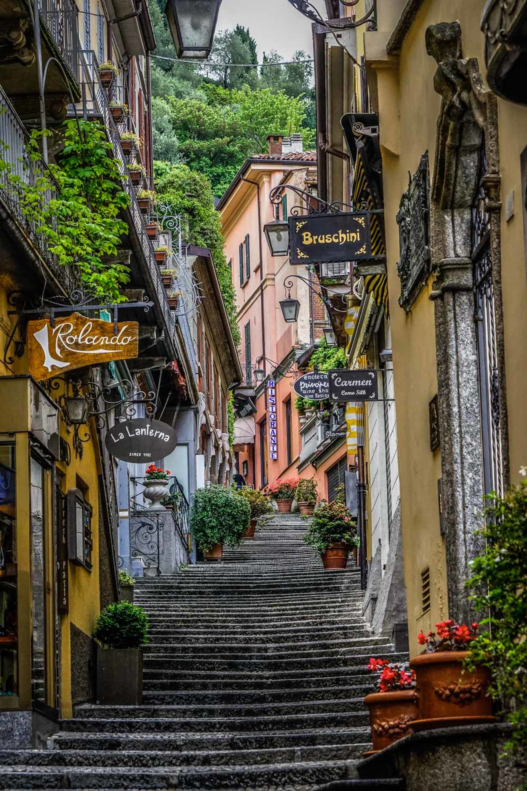 architecture, built structure, building exterior, building, staircase, the way forward, direction, plant, residential district, steps and staircases, day, no people, house, city, nature, footpath, outdoors, potted plant, old, narrow, alley