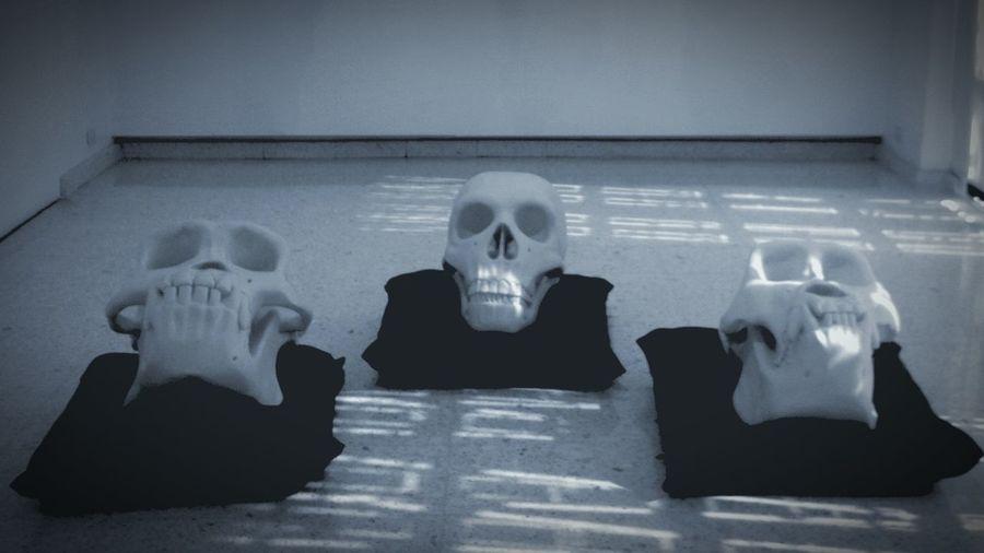 Exhibition Light Art Art Museum Artgallery Black & White Blackandwhite Skulls