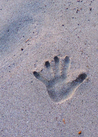 Amazing Beach FootPrint Hand Nature No People Outdoors Paw Print Print Sand Track - Imprint Tranquility