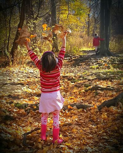 Fall Hike EyeEm Best Shots - Autumn / Fall Fall Autumn Leaves