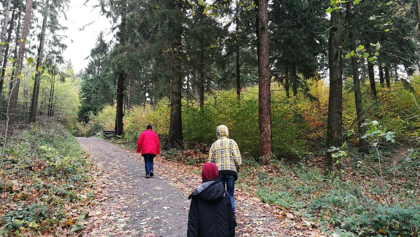 Men Tree Togetherness Forest Men Full Length Walking Rear View Sky Pathway Treelined Countryside Children The Way Forward Autumn Mood