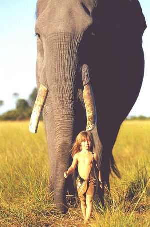 Kid Elephant Child Animal Togetherness Outdoors Playing Grass African Elephant Amazing Awsomenature Bravery Play Ground Safari Animals Nature One Animal Animals In The Wild Animal Themes