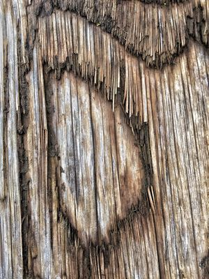 Abstract Nature Scenery Patterns In Nature Driftwood Surfaces And Textures Full Frame Textured  No People Pattern Backgrounds Day Close-up Outdoors Old Textile Wood - Material Rough Decline Weathered Design Damaged Nature