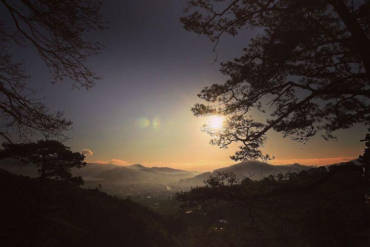 Sương sớm #by