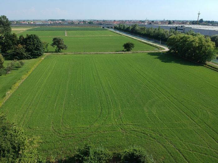 Rice paddy Dji Spark DJI X Eyeem Drone  Plant Green Color Field Land Landscape Nature Grass Growth Agriculture Environment Tranquil Scene Rural Scene Water Day Tranquility Sky Scenics - Nature Beauty In Nature No People Outdoors