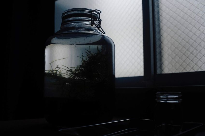 Container Glass - Material Bottle Indoors  No People Window Transparent