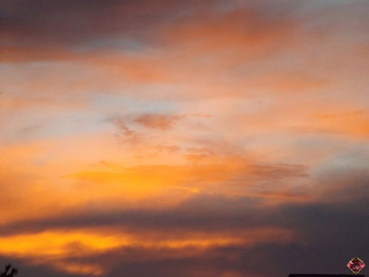 orange night sky Backgrounds Beauty In Nature Cloud Cloud - Sky Cloudscape Cloudy Dramatic Sky Full Frame High Section Idyllic Low Angle View Majestic Nature No People Orange Color Outdoors Overcast Scenics Sky Sunset Tranquil Scene Tranquility Weather