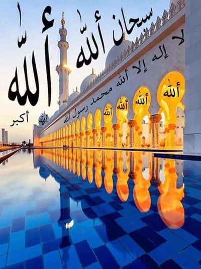 43 Golden Moments ابو خالد