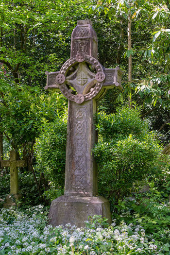 Plant Religion Belief Grave Cross Cemetery Day Spirituality Tree No People Nature Tombstone Sculpture Solid Stone Stone Material Outdoors Art And Craft Graveyard Highgate Cemetery Green Color Cross Gravestone Victorian Cemetery