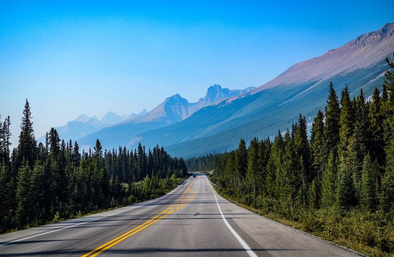 Mountain Road Direction The Way Forward Diminishing Perspective Beauty In Nature Tree Nature Mountain Range Non-urban Scene Dividing Line Canada