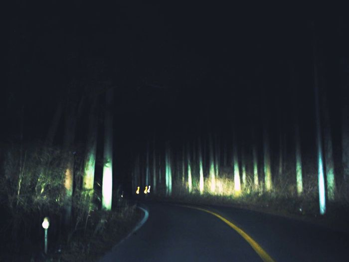 Hello World Nightphotography Nightmountain Nightdrive Forest Darkness Horror Photography Scary Trees Light Journey EyeEm Gallery