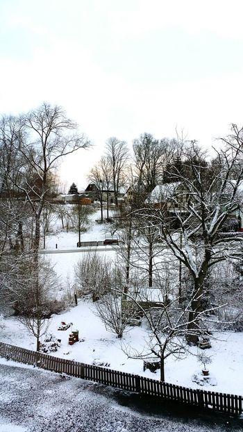 Nature Snow ❄ Winter