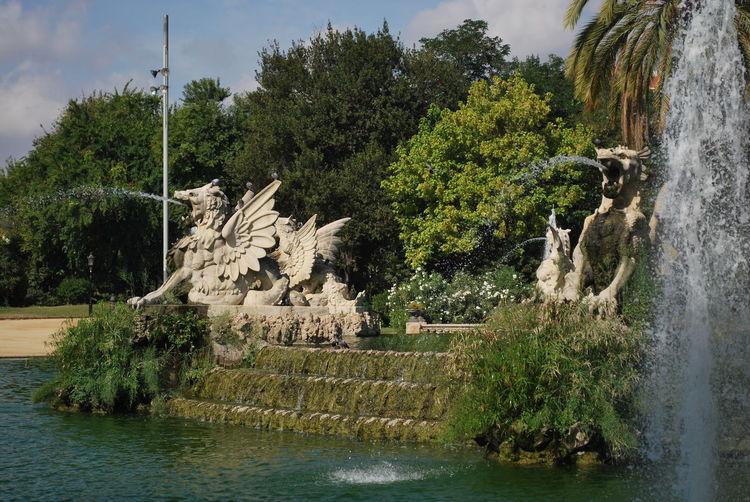 Barcelona Barcelona, Spain Catalonia Catalunya Day Fountain Nature No People Outdoors Park Sculpture Sky SPAIN Statue Tree Water