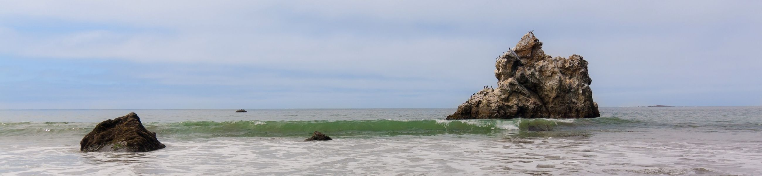 Rock in the Pacific Ocean at Bodega Bay, California. California Landscape Sonomacounty Ocean