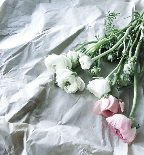 My favorites... Flowers Photo Myphoto Favorites