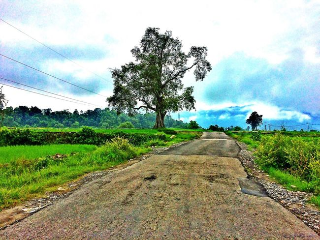 Nature Morning Dew Walking Around Tree Sky And Trees Hills And Clouds Ontheway Lookingback Freshness Street Empty Road