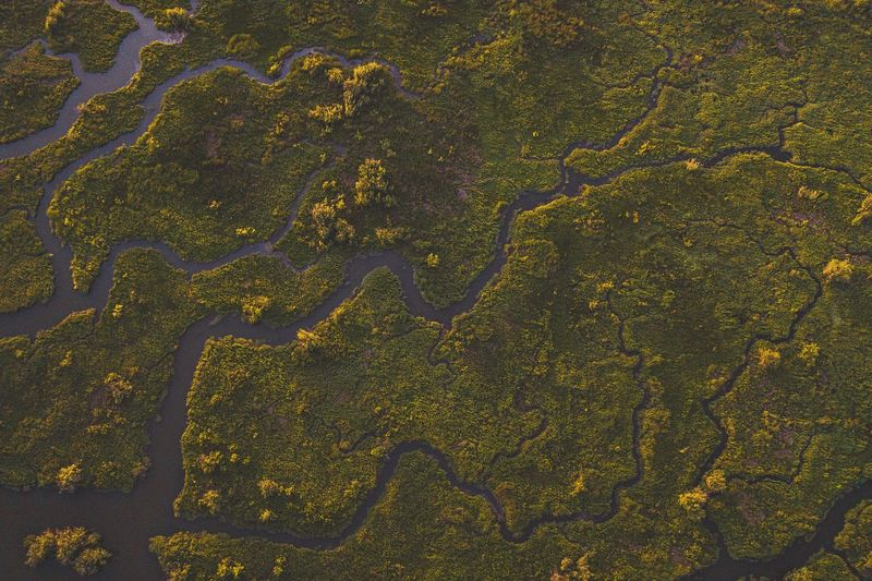 Aerial view of river and landscape