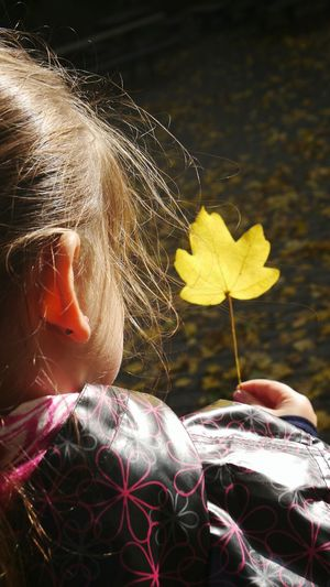 Autumn in her hand Autumn Nature Beauty In Nature Leaf Yellow Leaf Leaf In Hand Holding In Hand From Behind Rear View Girl From Behind Soft Light EyeEm Gallery Eyem Gallery Close-up Focus On Foreground