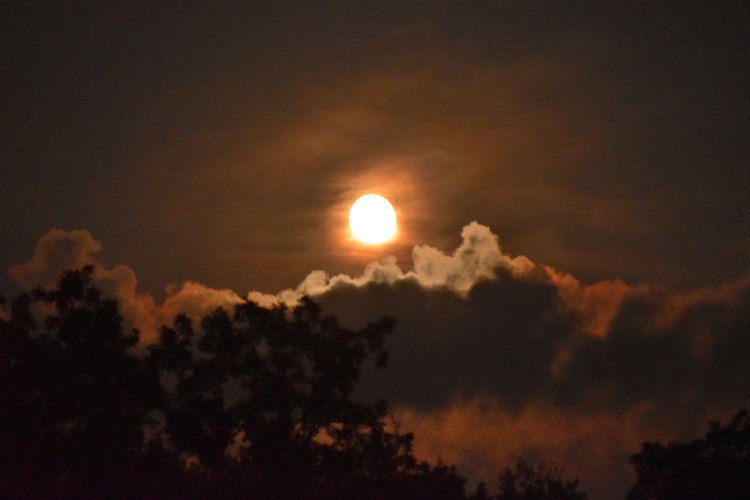 scenic view of moon at night Astronomy Beauty In Nature Cloud - Sky Idyllic Low Angle View Moon Natural Phenomena Nature No People Outdoors Scenics Sky Tranquil Scene Tranquility