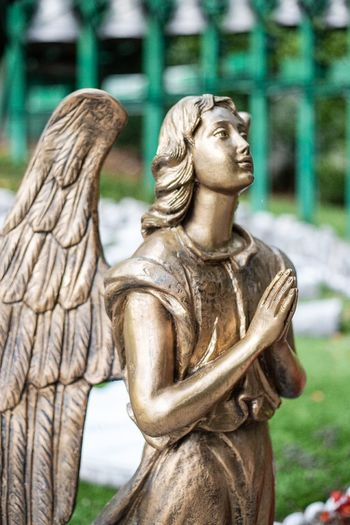 Close-up of angel statue in park