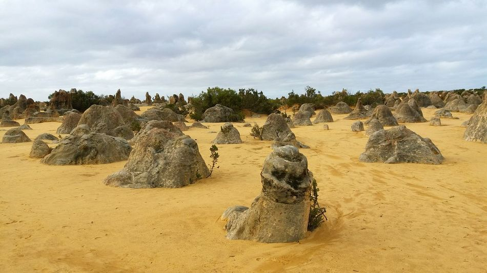 EyeEm Selects Sand Rock - Object Nature Cloud - Sky Landscape Desert No People Day Beauty In Nature Outdoors Scenics Vacations Australia Pinnacles Travel Built Structure Rock Formation Yanchep National Park Tourist Attraction  Old Ruin Perth Travel Destinations