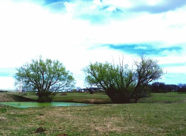 Pond Fine Art Photography Landscape On The Way Nature Outdoors Simple Things In Life Miles Away