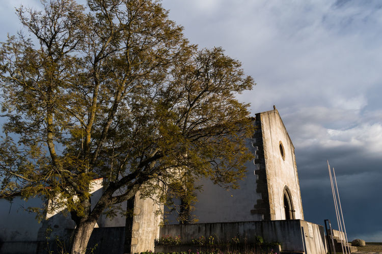 Castle of Abrantes Portugal Architecture Building Exterior Built Structure Day Low Angle View Nature No People Outdoors Sky Tree