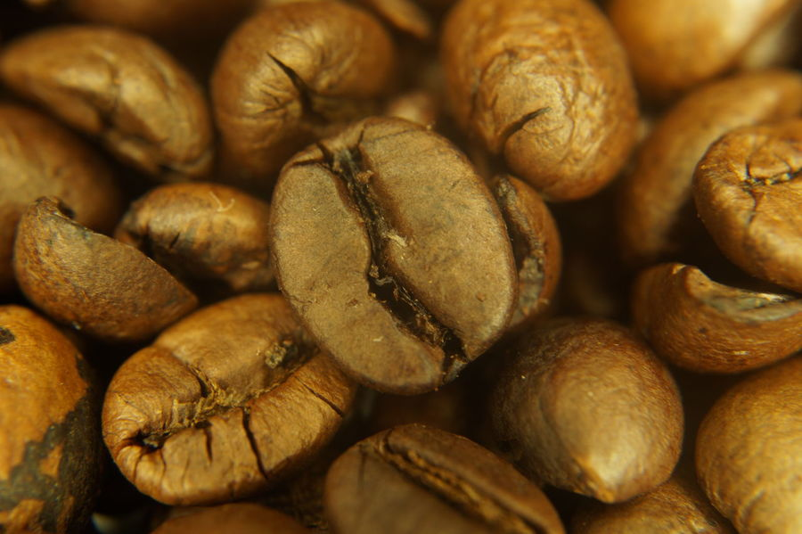 coffee bean close up Brown Close-up Coffe Beans Coffee Coffee Beans Coffeebean Coffeebeans Kaffee Macro Macro Photography