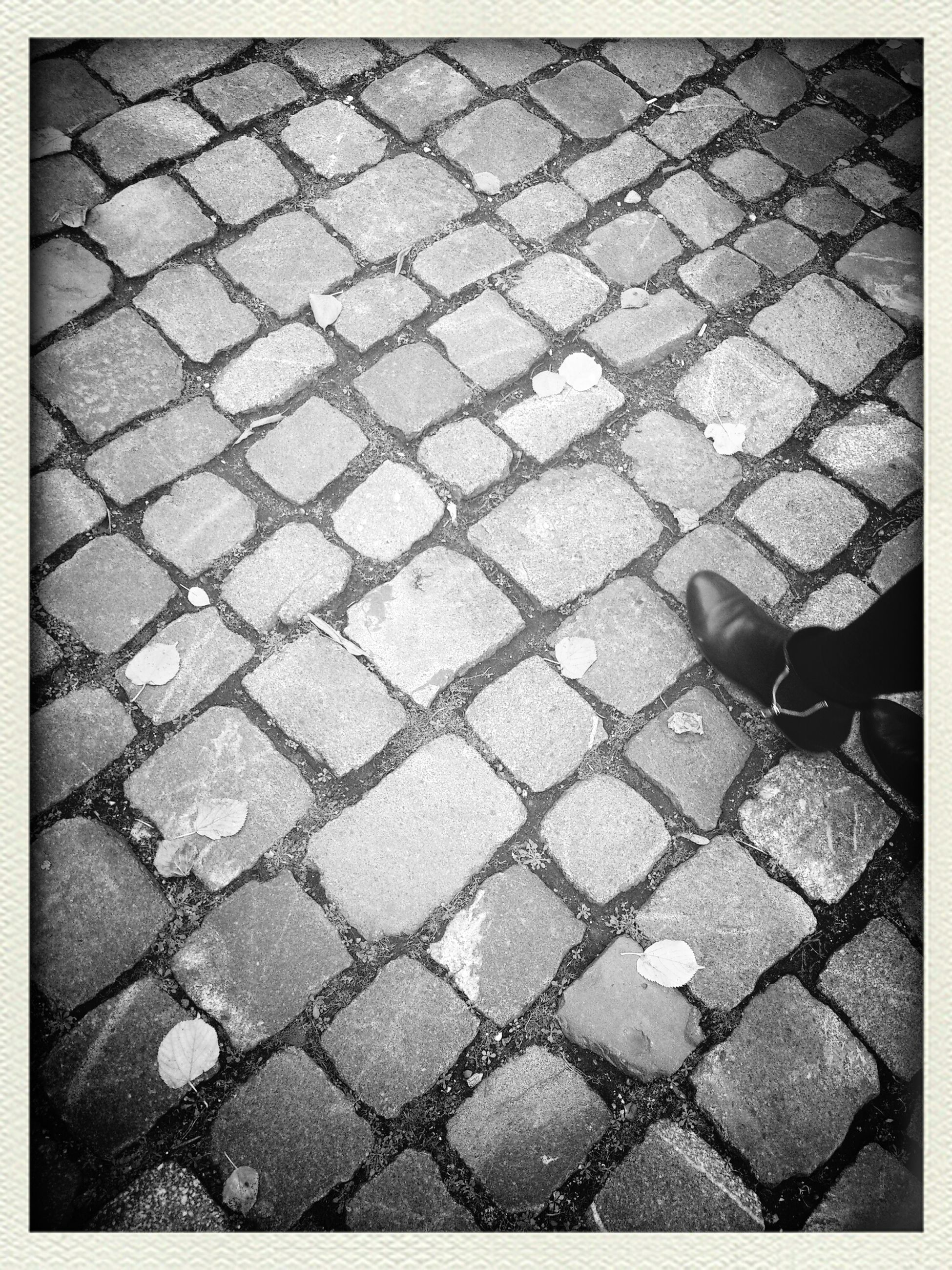 transfer print, cobblestone, high angle view, auto post production filter, paving stone, pattern, street, full frame, footpath, backgrounds, sidewalk, textured, pavement, shadow, sunlight, outdoors, day, close-up, ground, road