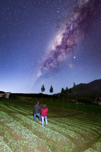 Rear view of friends on field against sky at night