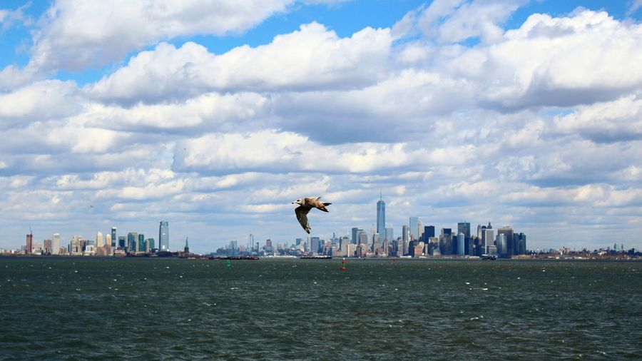 Water City Outdoors Nature No People Landscape Harbor Urban Skyline Cityscape Sky Day New York City Ferry Manhattan Flying High