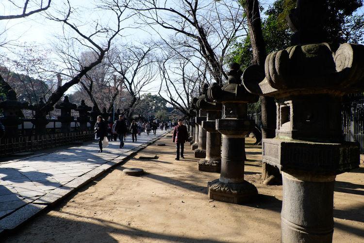 上野東照宮の石灯籠 Architecture Fujifilm Fujifilm X-E2 Fujifilm_xseries Japan Japan Photography Lantern Narrow Shrine Stone Lantern Tokyo Ueno XC16 上野 上野東照宮 日本 東京 灯籠 石灯籠