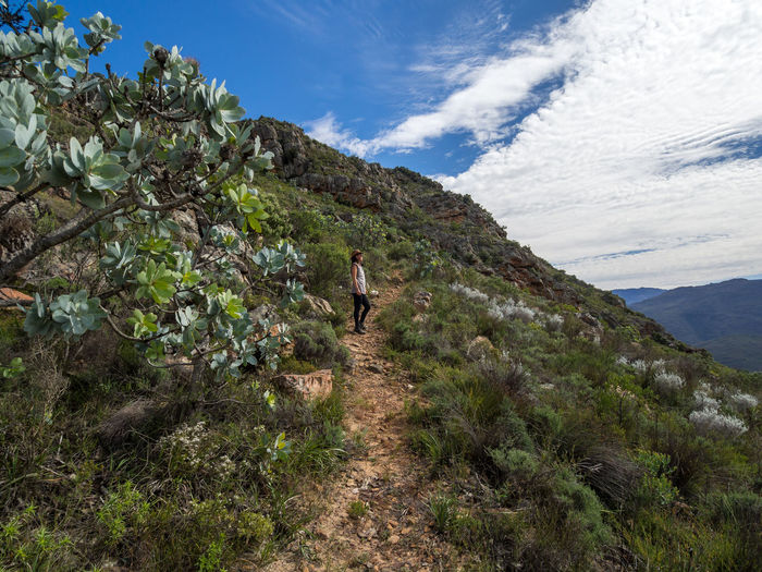 View of young woman walking in cederberg mountains, south africa