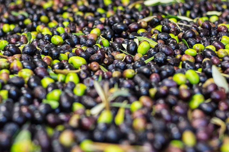 Full frame shot of olives